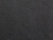 Black Slate (mustang)